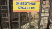 zoodārzs Minska